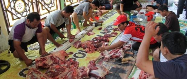 pengepakan daging qurban dpw ldii provinsi lampung